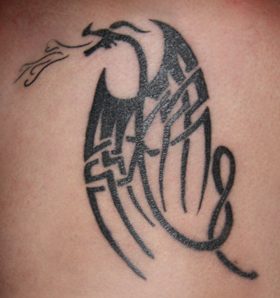 celtic Dragon Tattoo Designs, Tribal Dragon Tattoo, Tribal Tattoos, popular Tattoos
